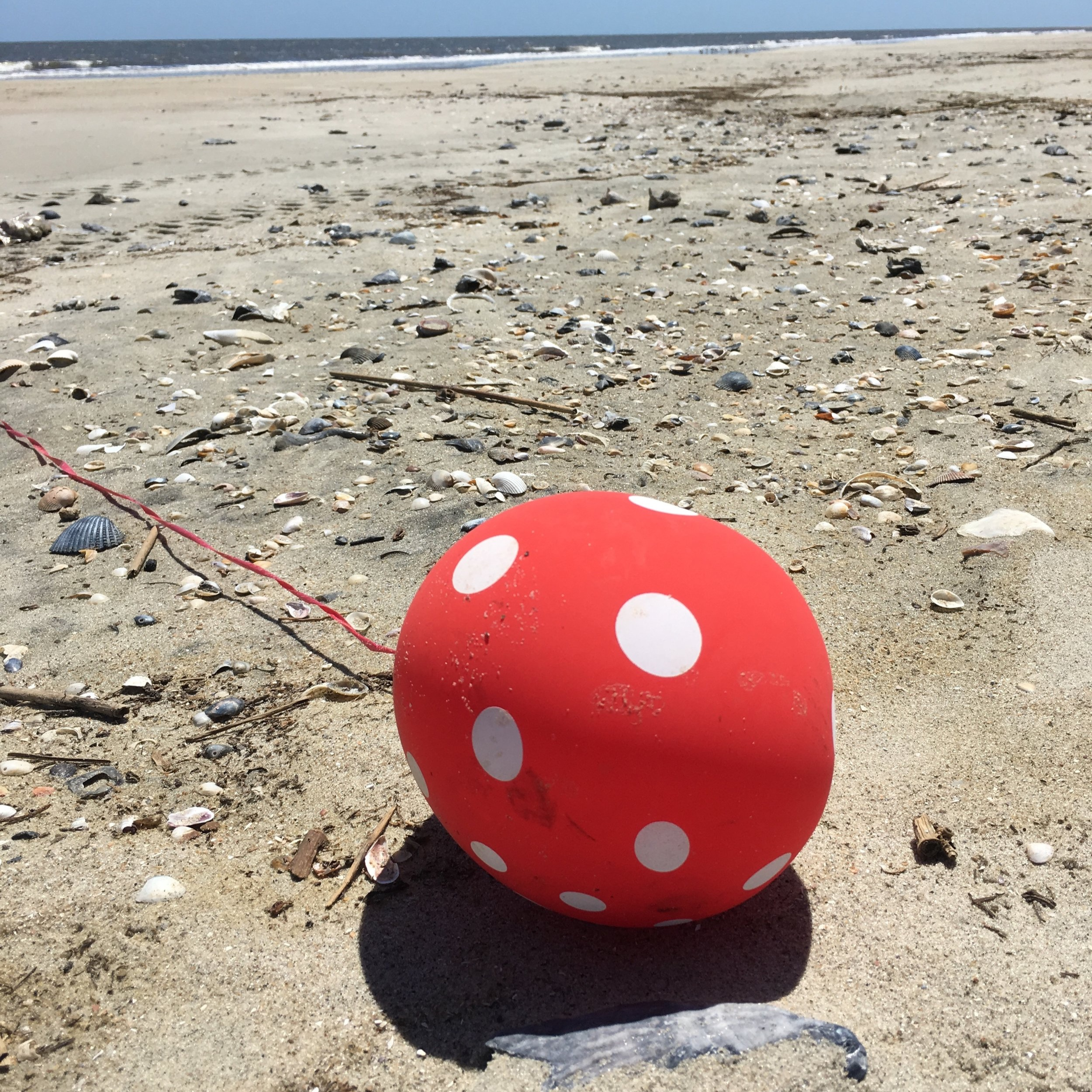 Consider Pollution-Free Alternatives to Balloon Releases