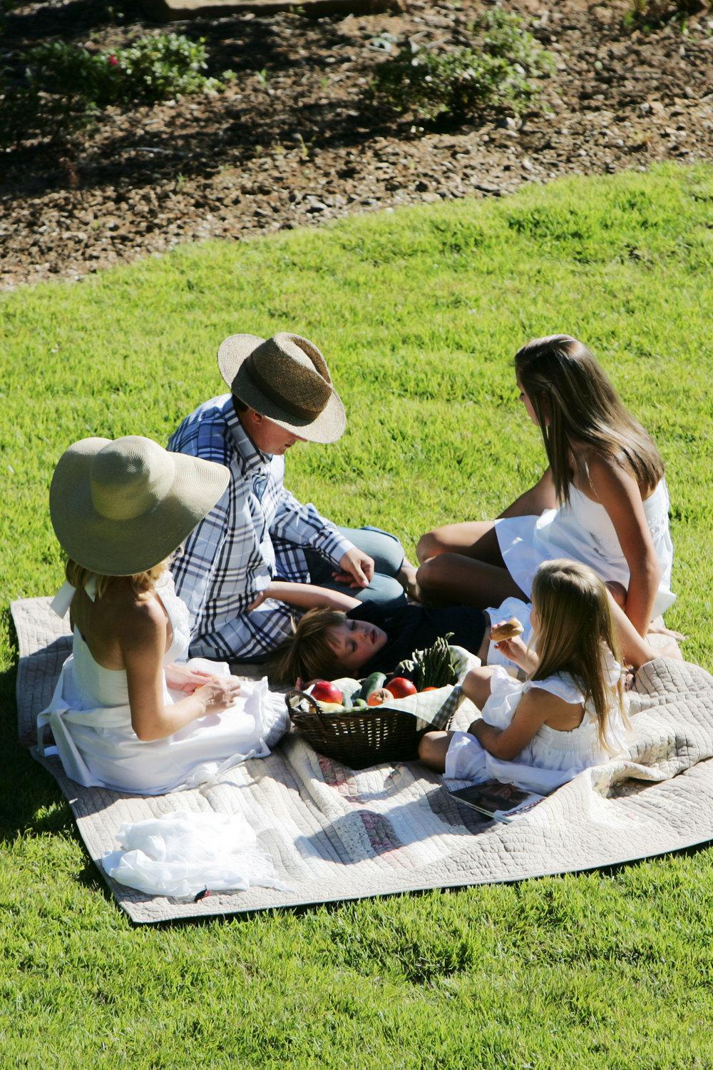 Gorecki family picnic