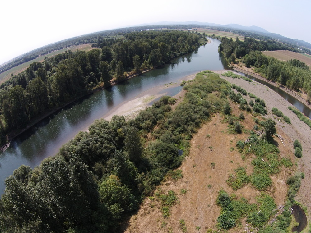 Tripp Island Greenway - Just a few miles downstream of Corvallis.