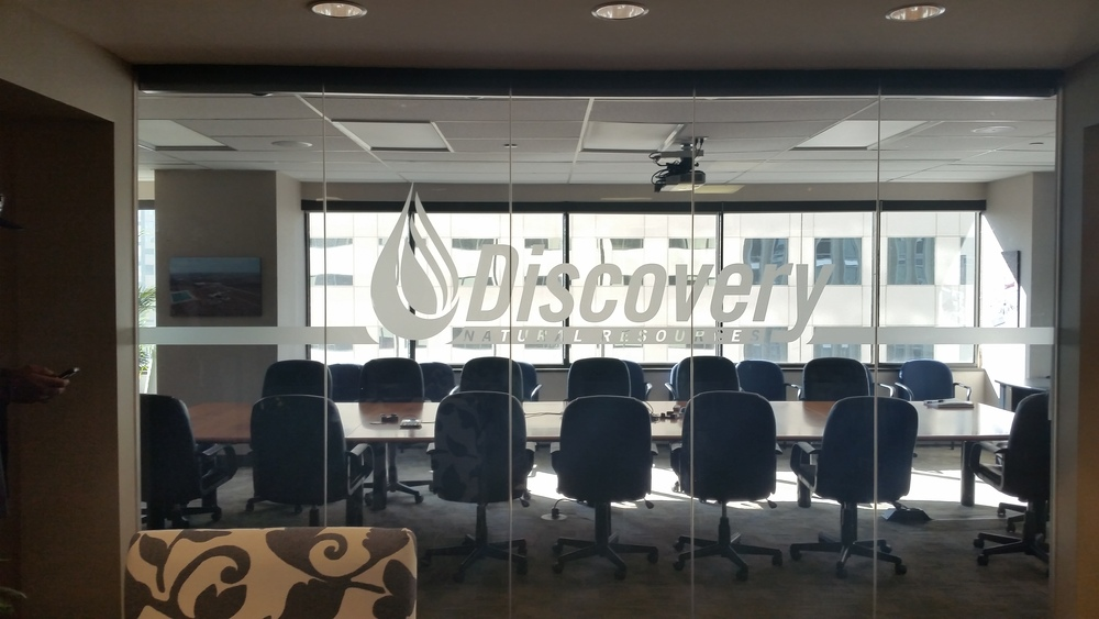 Discovery Frosted Vinyl 1.jpg