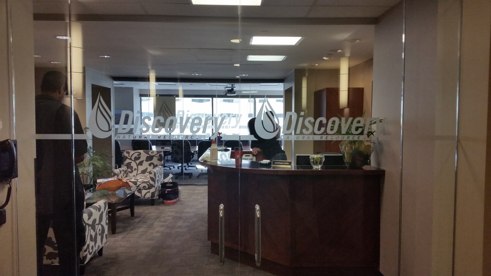 Discovery Frosted Vinyl 2.jpg