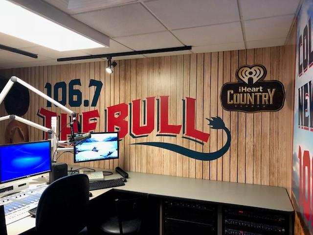 the bull - 1.jpg