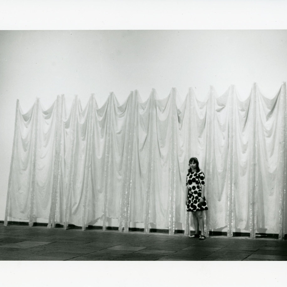 "Eva Hesse, ""Expanded Expansion"" (1969)"