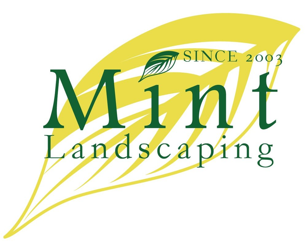 MINT LOGO NEW.jpg