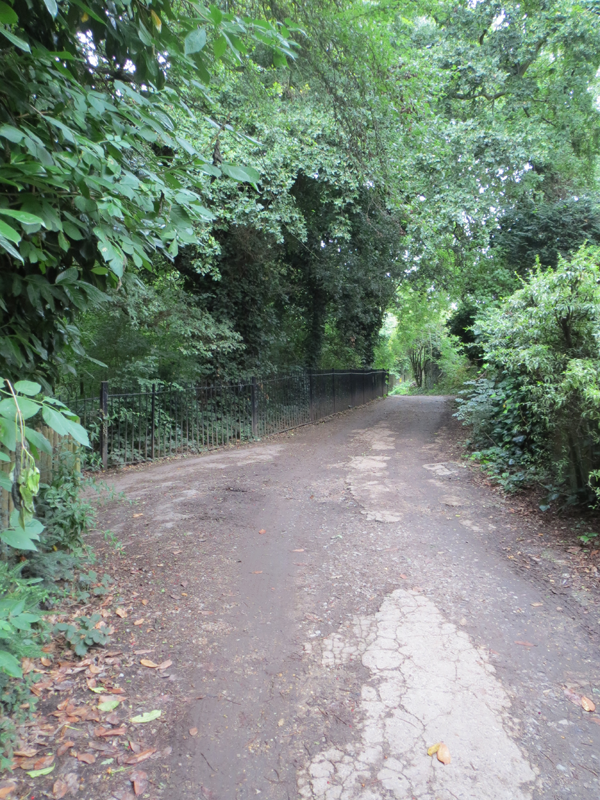 The road leading to the Ladies' Pond