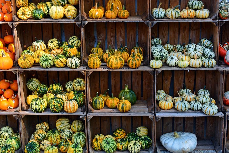 pumpkin-1642307_960_720.jpg