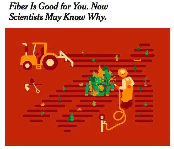 https://www.nytimes.com/2018/01/01/science/food-fiber-microbiome-inflammation.html