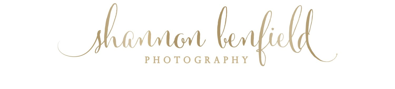Banner Elk-Blowing Rock Wedding Photographer | Senior-Family Photography