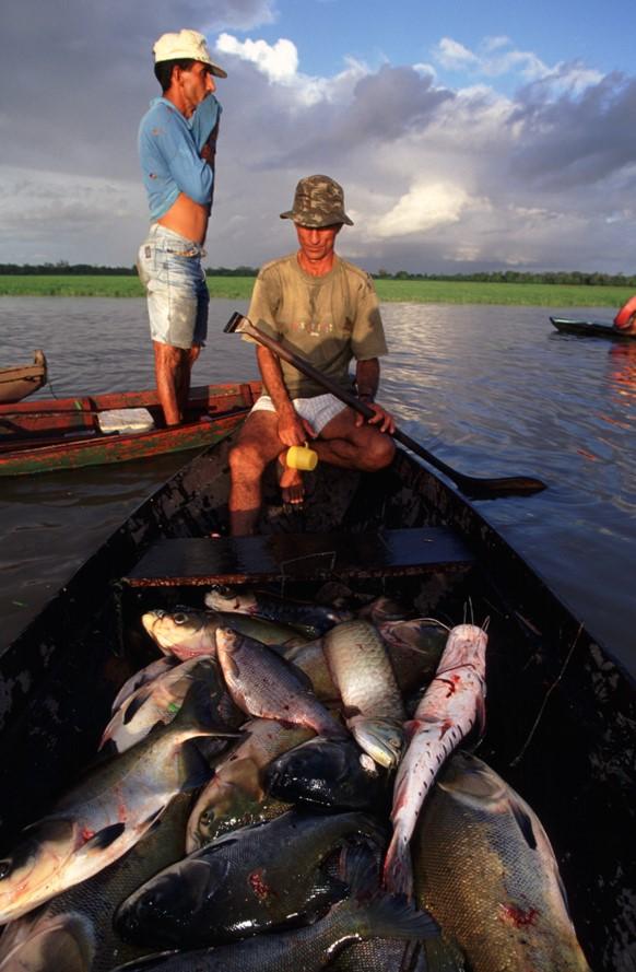 PescaArtesanalBA.jpg