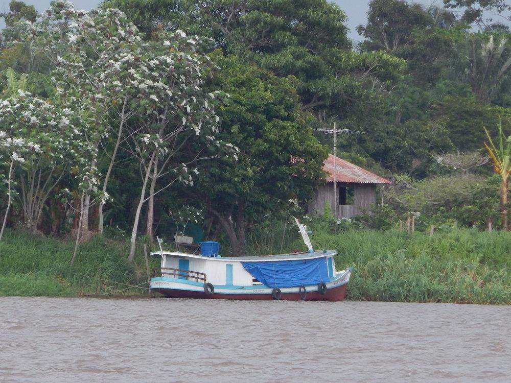 Lago na região do Ituqui