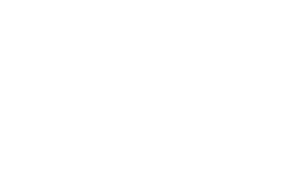 fem-manifesto.png