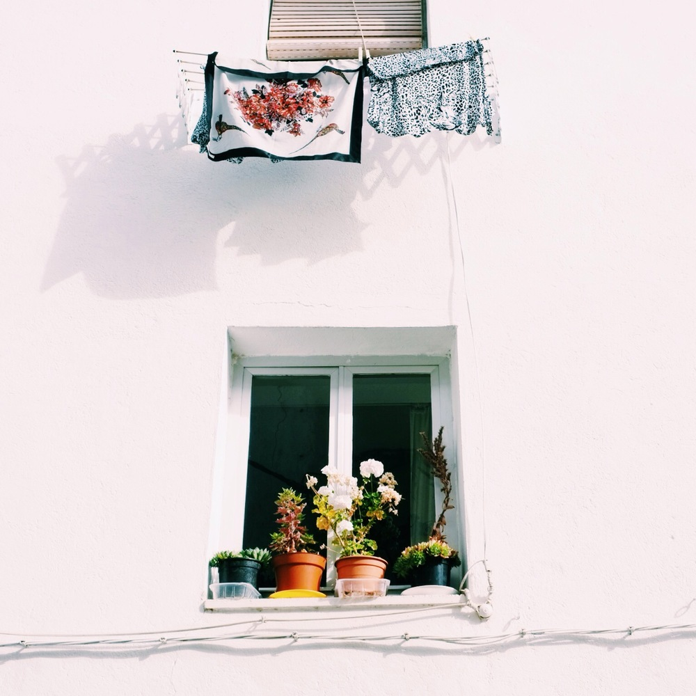 Somewhere on the Camino, Spain || 📷 Ryan Moore