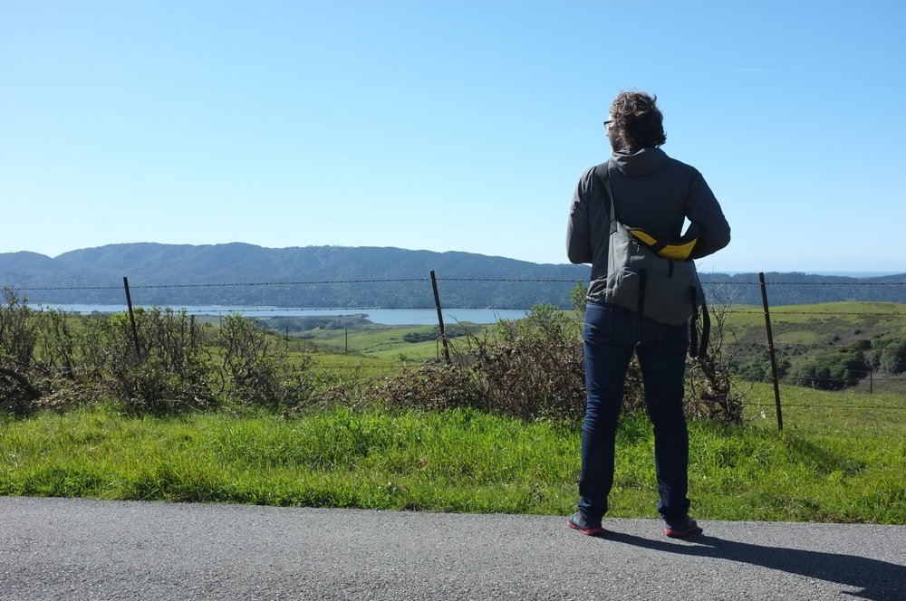 Tomales Bay Overlook