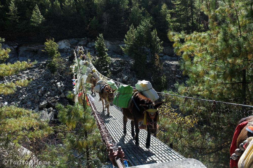 Dramatic suspension bridges are par for the course