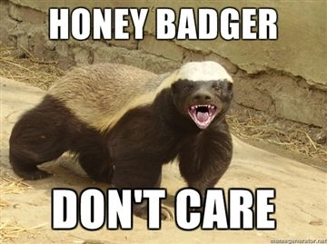 honey-badger-dont-care.jpg