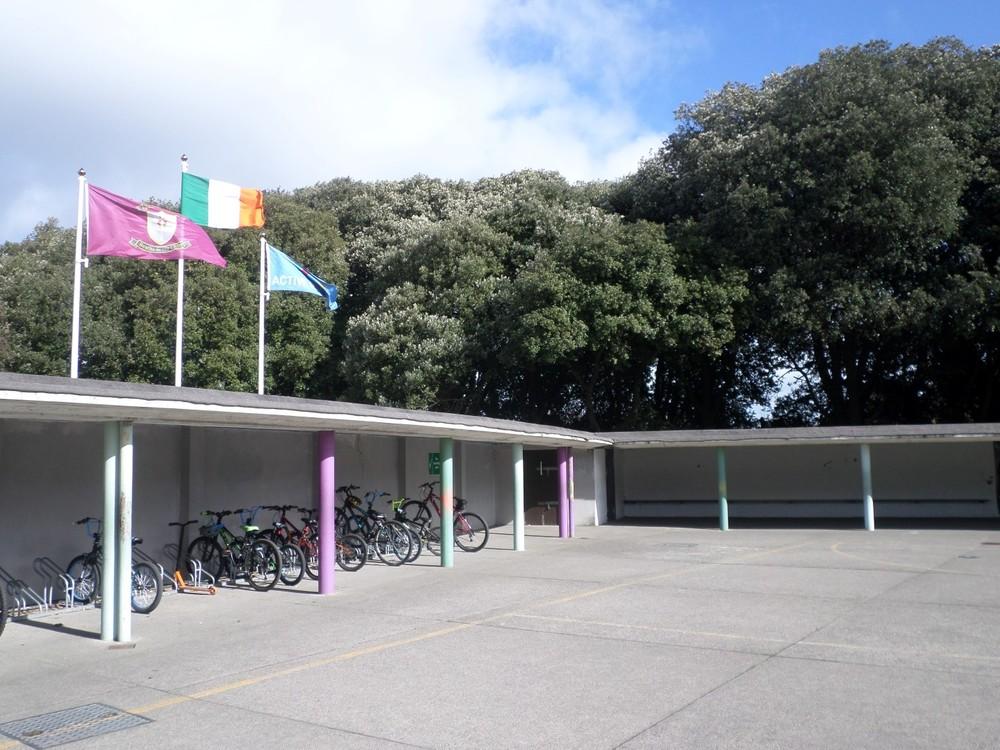 4 bike store (Large).JPG