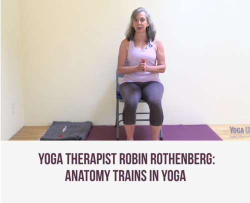 Yoga, Fascia & the New Anatomy of the Body — Essential Yoga Therapy
