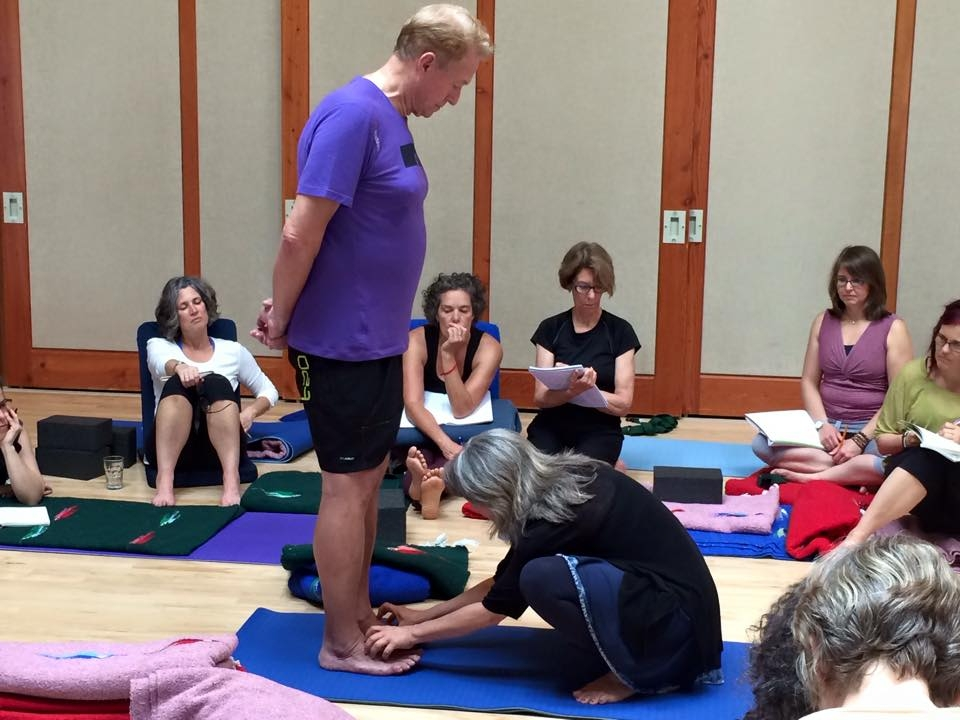 Experiential application for group classes, workshops, series and individualized yoga therapy sessions.