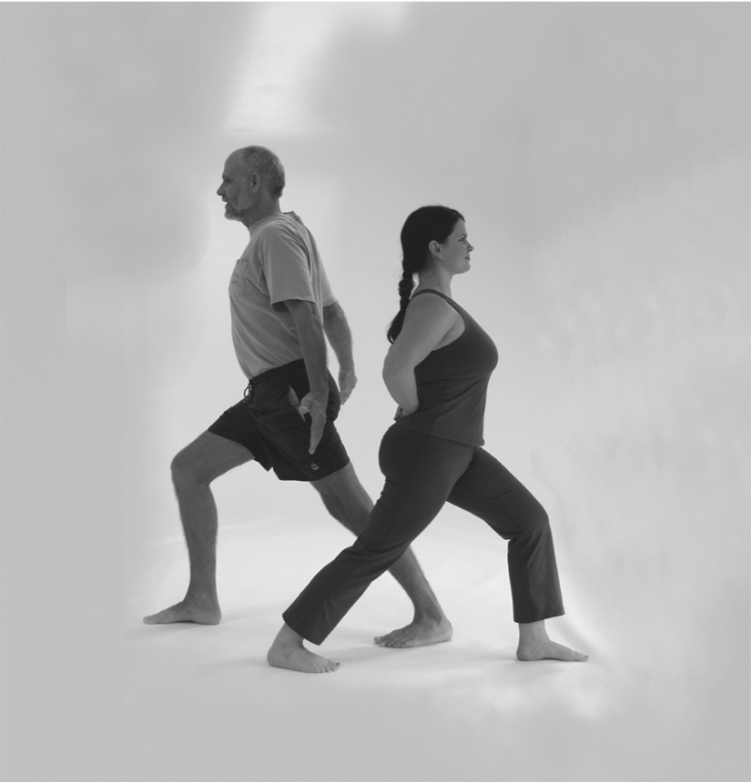 Enriching content for all levels of yoga experience - An excellent tool for teachers and students alike to alleviate chronic low back pain, tension, mild scoliosis and sacroiliac conditions.