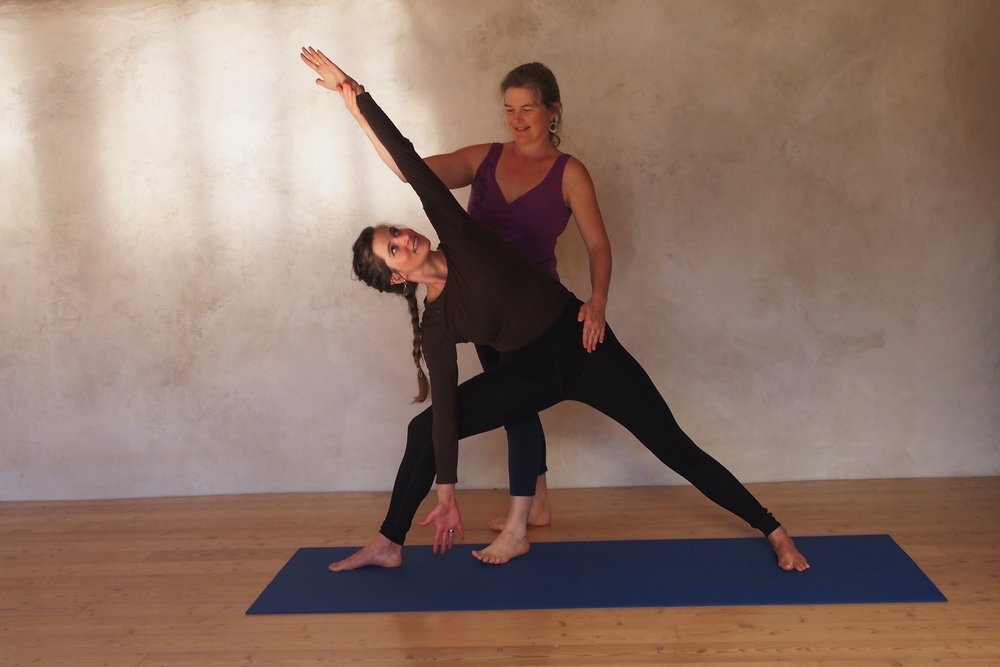 Hands On Adjustments For Yoga Poses With Llewellyne Arden Essential Therapy