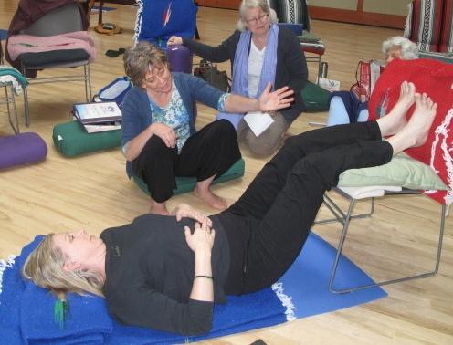 Essential Low Back Teacher Training -