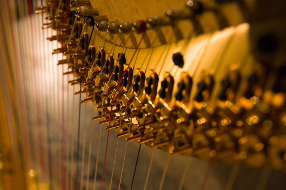 Thinking about hiring a harpist? - You're in great hands.