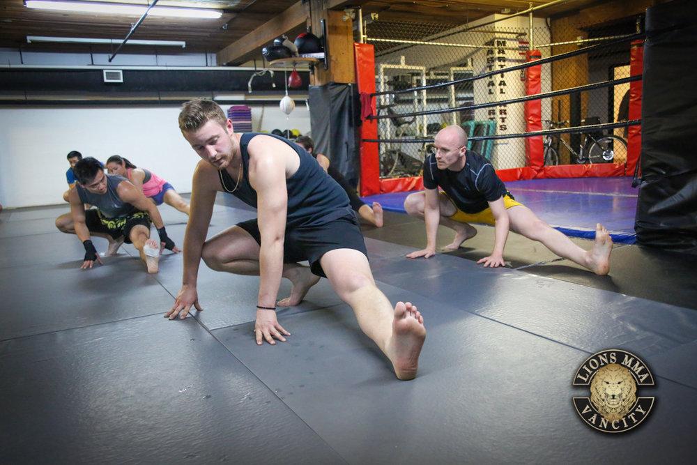 LIONS MMA VANCITY - 2014-04-11 - Ron Sombilon Photography-10-WEB.jpg