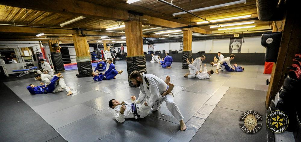 LIONS MMA - RIBEIRO JUI-JITSU  - SOMBILON PHOTOGRAPHY-103.jpg