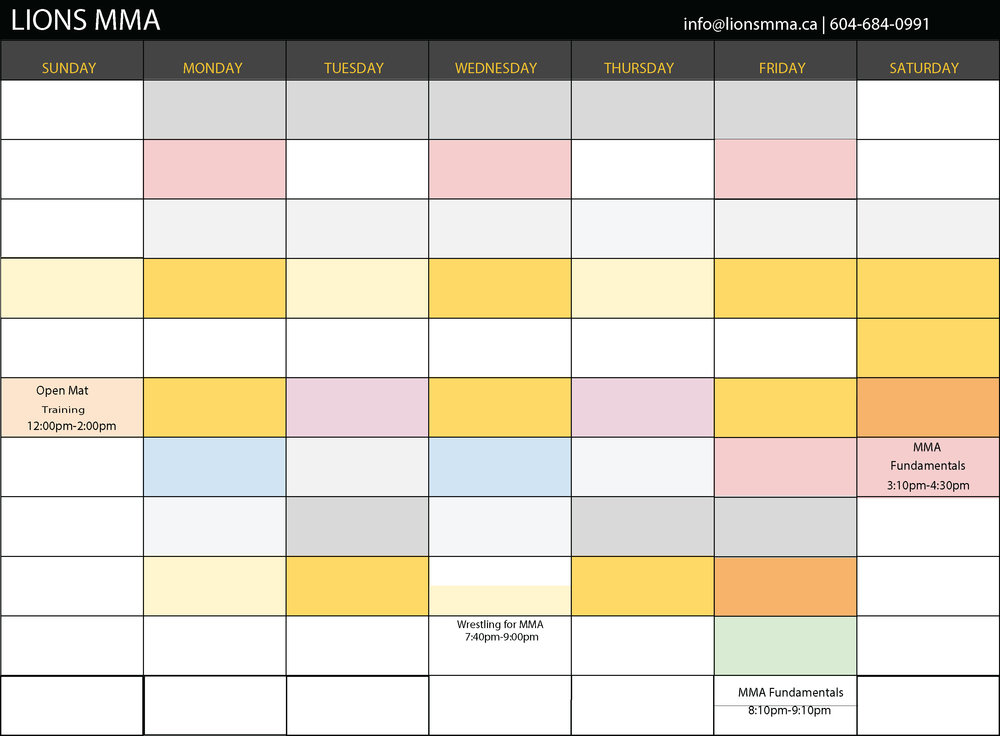 Lions_MMA_schedule_MAY_2017_MMAFUNDAMENTALS.jpg