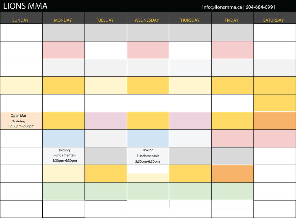 Lions_MMA_schedule_MAY_2017_BOXINGONLY.jpg
