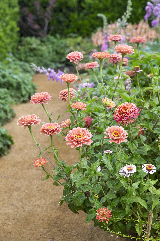 Sunset Magazine's Test Garden