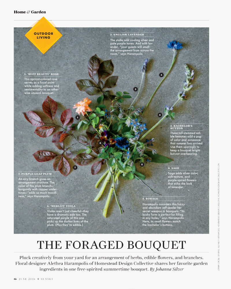 #9 The Foraged Bouquet.jpg