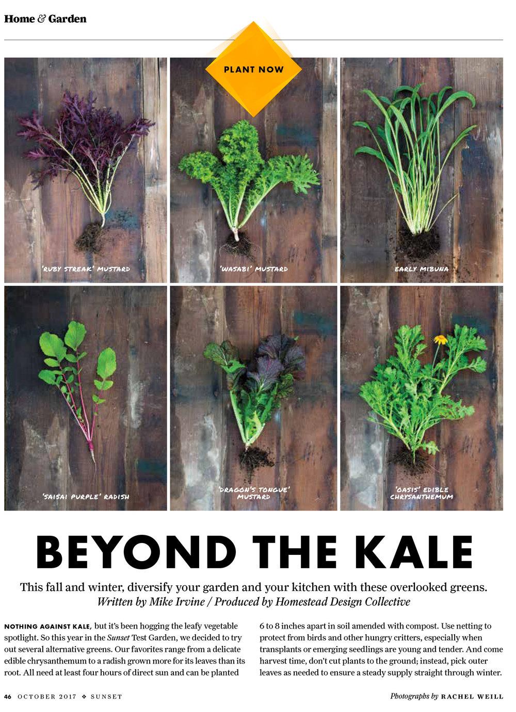 #1- Beyond the Kale-1 white.jpg