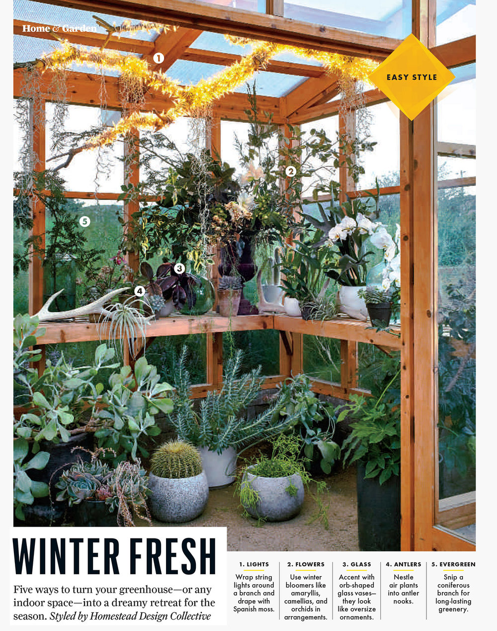 #8- Holiday Greenhouse 2.jpg