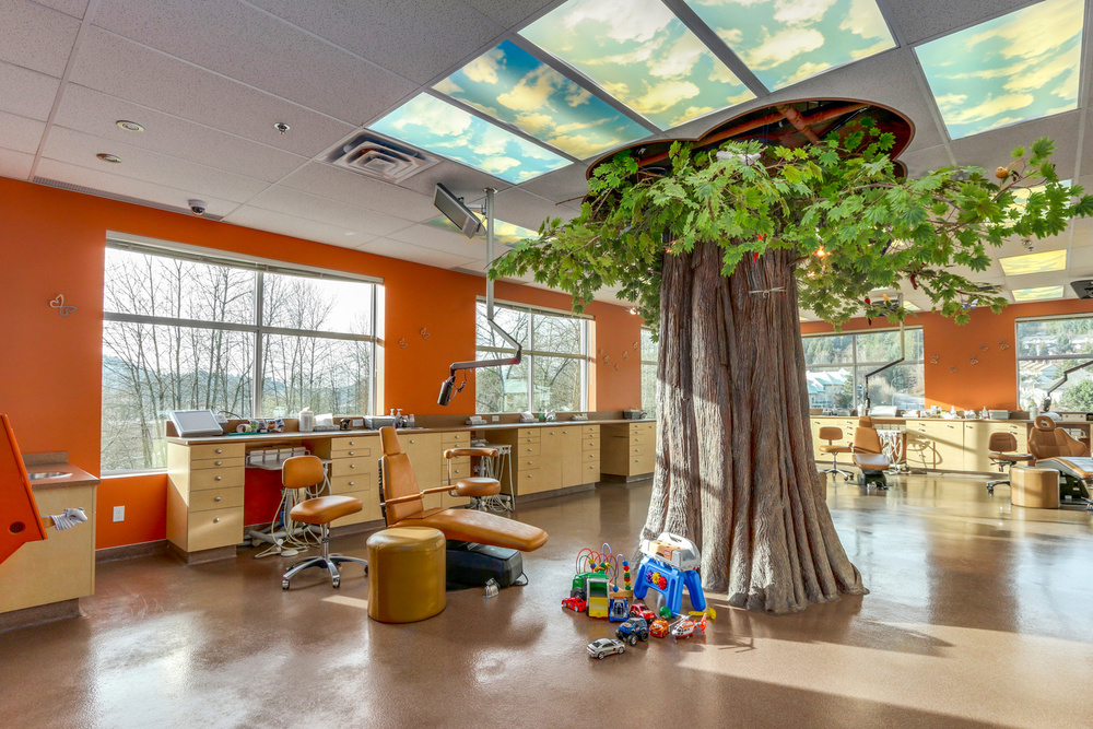 Each Monarch Pediatric Dental Centre has nature-inspired theme including trees, blue-sky ceilings, huge fresh-water aquariums, and of course, butterflies.