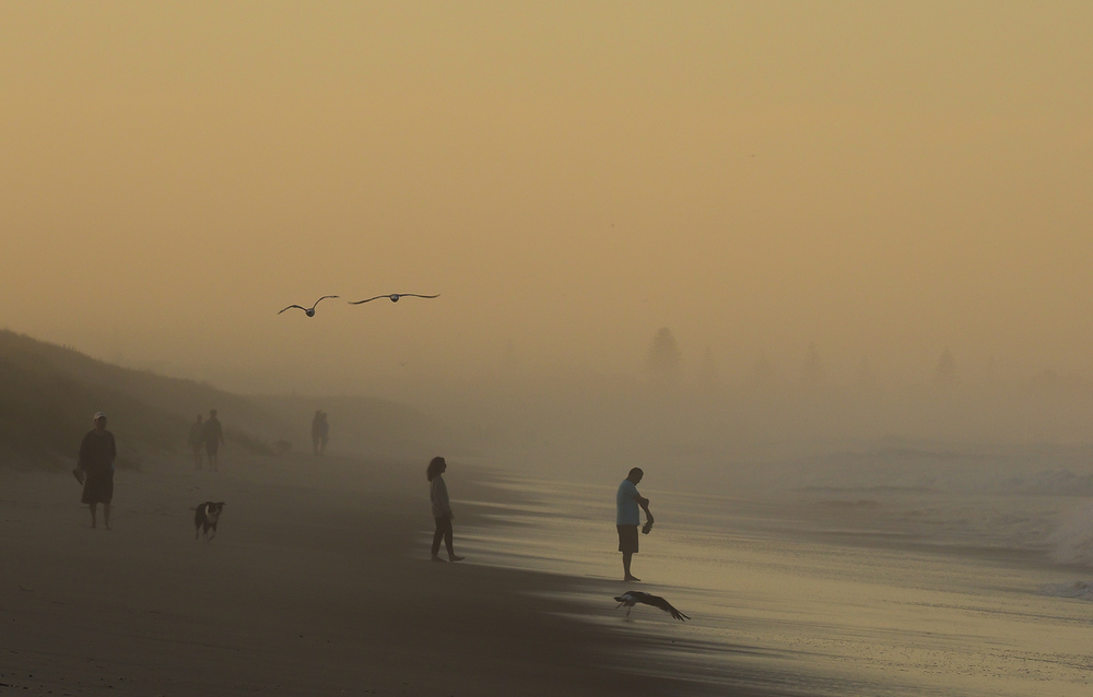 Sand dunes & salty air