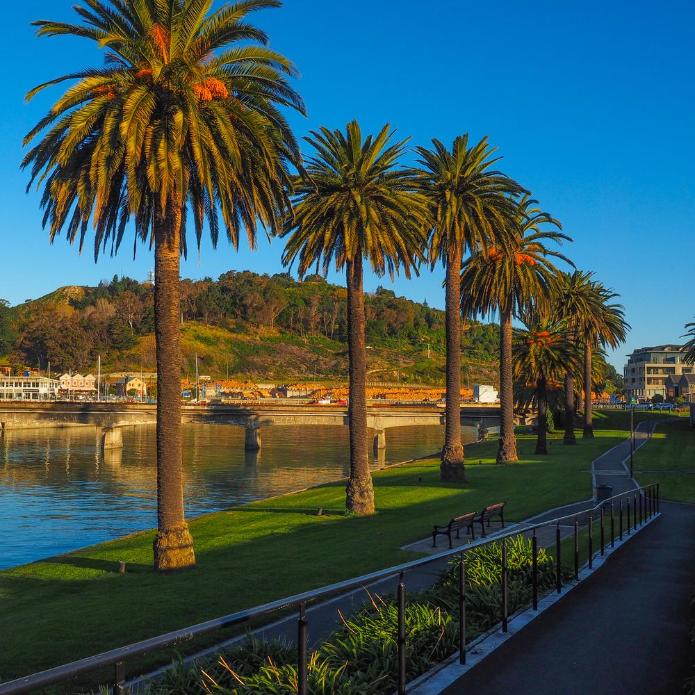 Turanganui River, Gisborne, NZ. 1/320sec, f/9, ISO 200