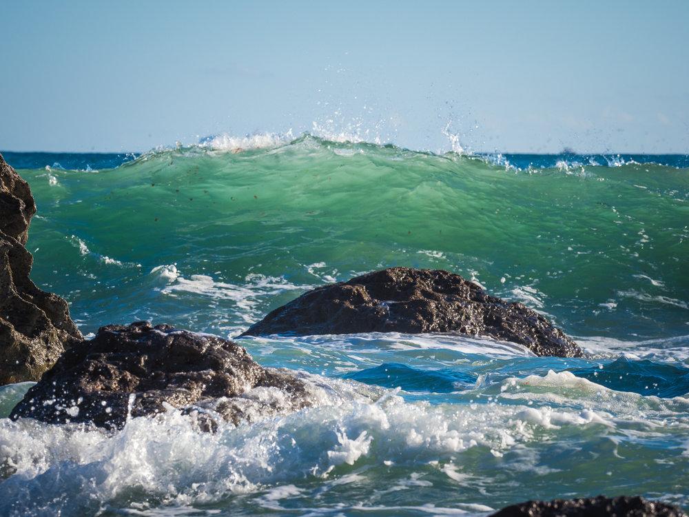 Ocean fresh 2. P2110659