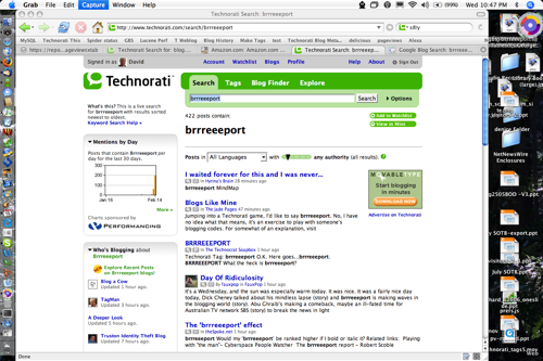 Technorati-Brrreeeport