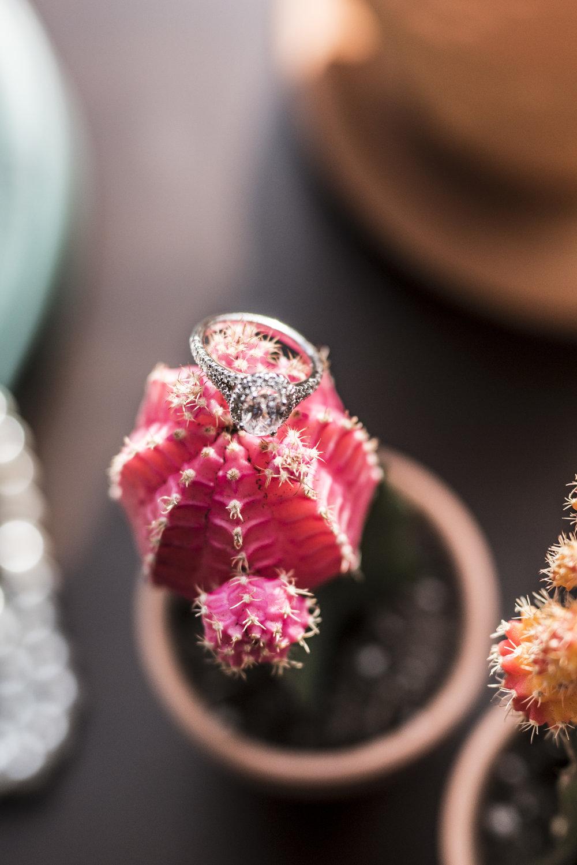 Cactus Protea Desert Inspired Wedding Sourisrose Rose 3.jpg