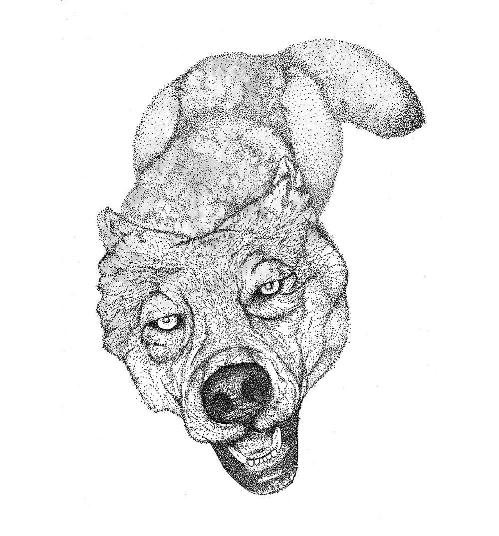 Web_dog.jpg