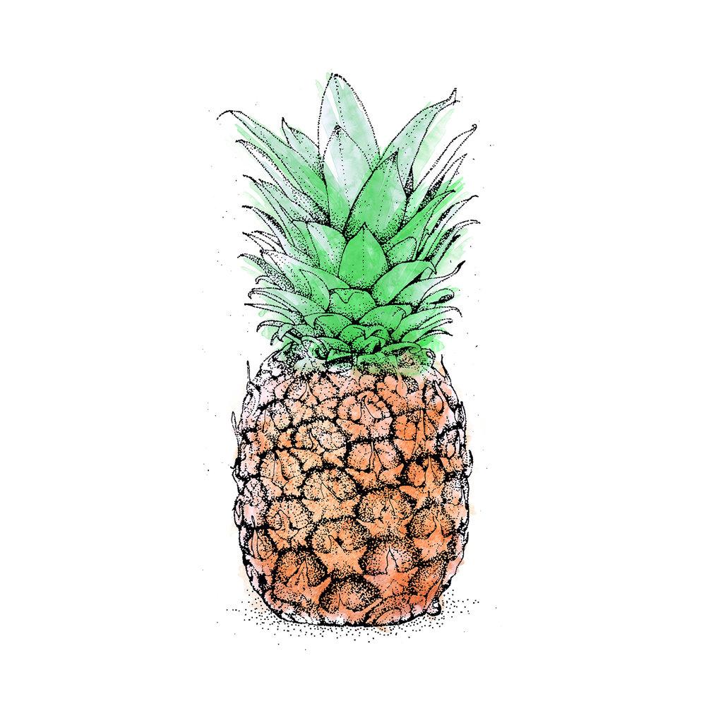 Web_ananas.jpg