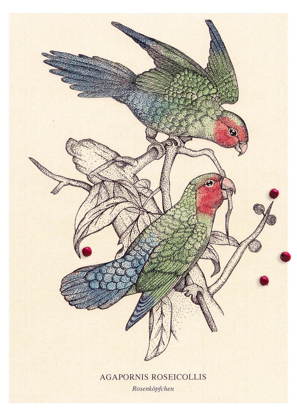 1500x2100_Birds.jpg