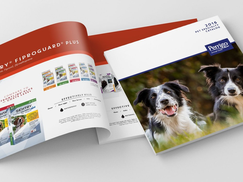 catalog+cover.jpg