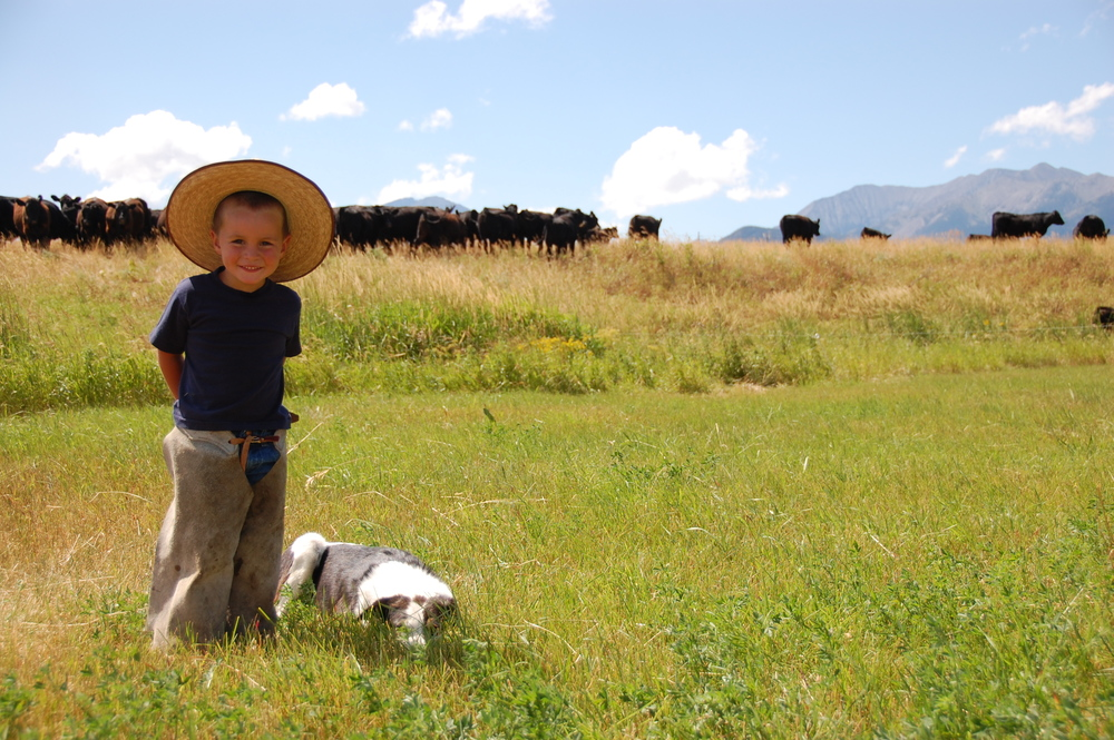 Cute kid with his cow dog on Montana ranch