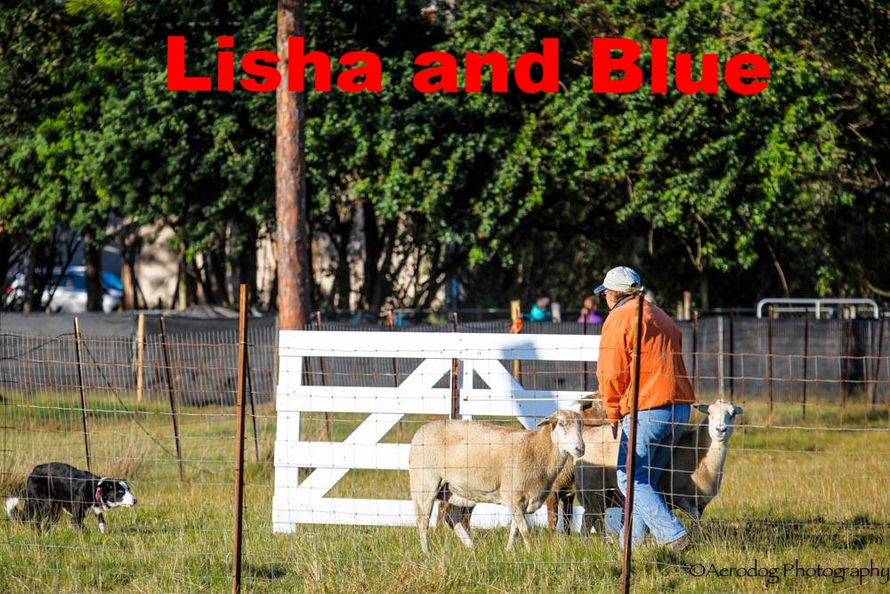 Lisha and Blue.jpg