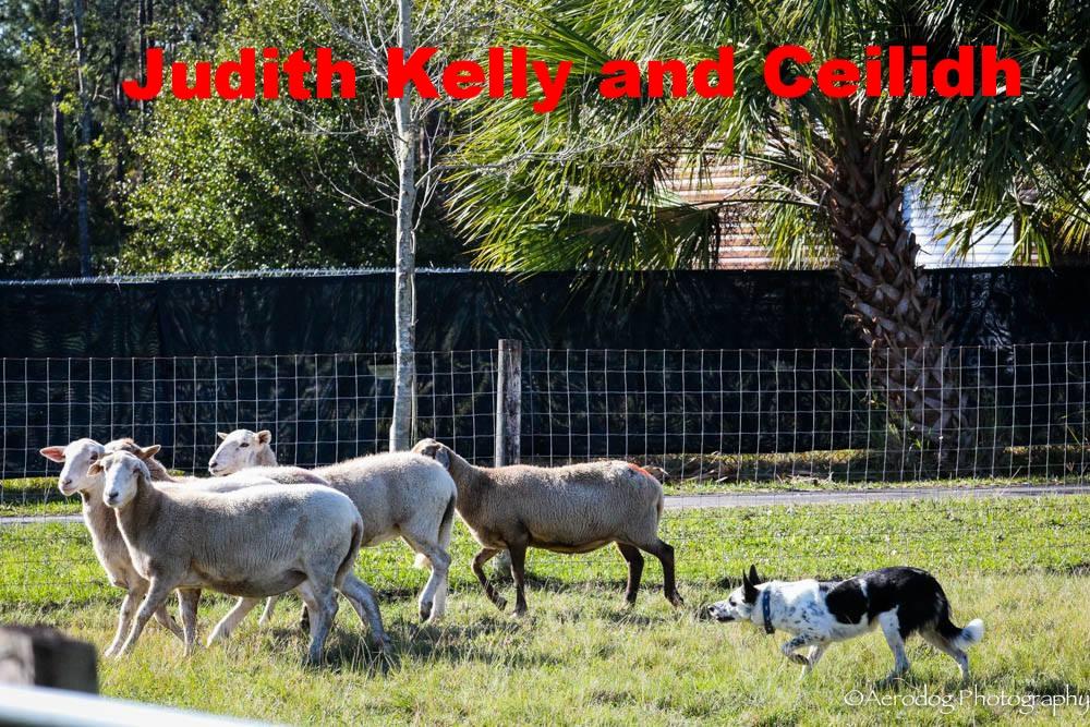 Judith Kelly and Ceilidh.jpg