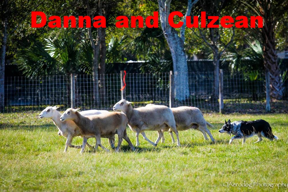 Danna and Culzean.jpg
