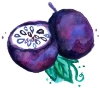 MNS Logo_Passionfruit Illustration.jpg