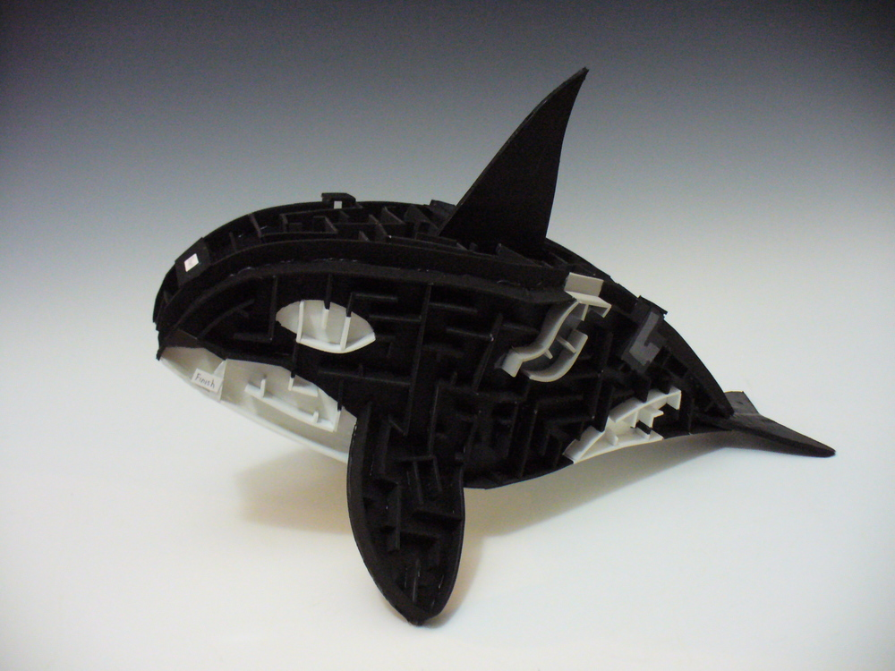 KillerWhale copy.JPG